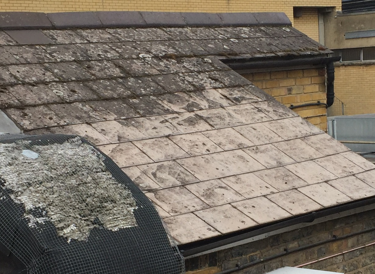 The Ever-lasting Roof Tile - RB Asbestos Consultants